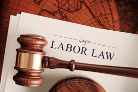 Labor Code of Vietnam 2012 - Chapter I GENERAL PROVISIONS